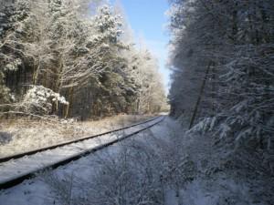 Sonderfahrten durch die Dübender Heide im Winter 2009